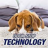 Resolve Pet Carpet Spot & Stain Remover Spray, 22oz