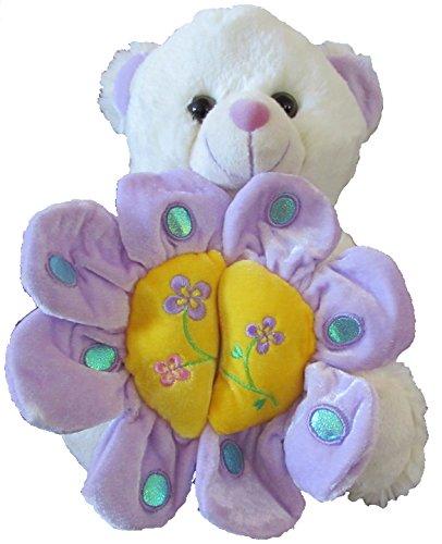 Birthday Message Bear (Bear Plush - Stuffed Animal with hiding