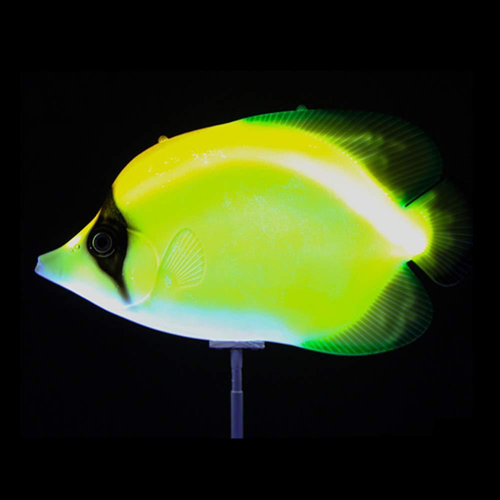 Außen Innen Garten Lampen Deko Leuchte LED Lichter Wasserdichte Dekoration Licht Nett Multi Farbe Tropischer Fisch Lichterkette Für Rasen Pool Teich Vase Badewanne Spa Aquarium 3W 12V 41  21  8Cm