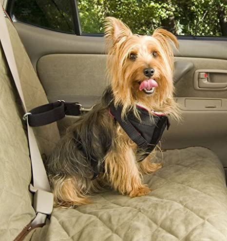 Dog Car Harness >> Solvit Car Safety Harnesses For Dogs