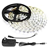 LE 12V LED Light Strip Kit, Flexible, 300 LEDs SMD 2835, 16.4ft Tape Light Kit for Home, Kitchen, Party and More, Power Adapter Included, Daylight White