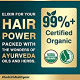 Life & Pursuits USDA Organic Hair Growth Oil With