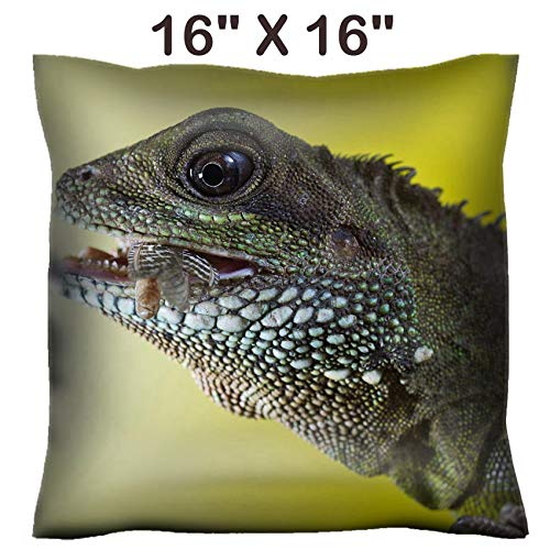 Liili 16x16 Throw Pillow Cover - Decorative Euro Sham Pillow Case Polyester Satin Soft Handmade Pillowcase Couch Sofa Bed Close up Portrait of Beautiful Water Dragon Lizard Reptile Eating an Insect P