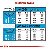 Royal Canin Large Puppy Dry Food