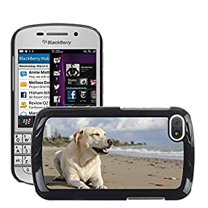 Super Stella Slim PC Hard Case Cover Skin Armor Shell Protection // M00146733 Dog Labrador Pet Beach Animal // BlackBerry Q10