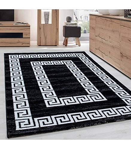 Teppich Modern Designer Wohnzimmer Bordüre Versace Muster Meliert Schwarz  Weiss - 120x170 cm