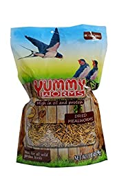 YUMMYWORMS Bulk Dried Mealworms-Treats for Chickens & Wild Birds (1 LB)