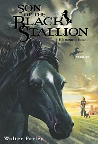 book cover of Son of the Black Stallion