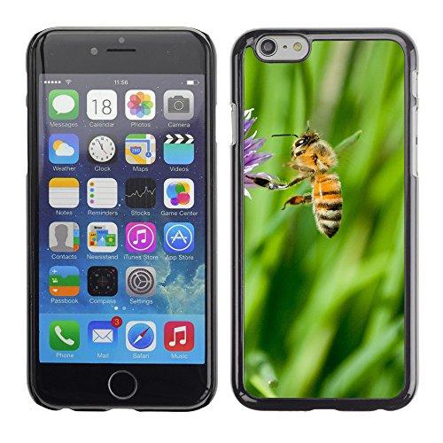 """Premio Sottile Slim Cassa Custodia Case Cover Shell // V00003596 peu de miel d'abeille // Apple iPhone 6 6S 6G PLUS 5.5"""""""