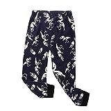 Baywell Baby Boy's Pajamas, Kids Dinosaur