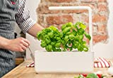 The World's Smartest Indoor Garden