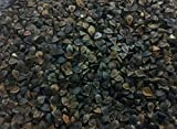 SanDaveVA Brand Buckwheat Seeds 1 lb Bulk Forage Food Plot Unhulled Cover Crop with 2 Plant Bottle Top Waterer