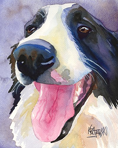 Dog Print Collie - Border Collie Dog Fine Art Print on 100% Cotton Watercolor Paper