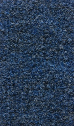 X 10' 2'6 Blue Runner (Koeckritz Indoor/Outdoor Area Rug Carpet (Many colors and sizes Available (Pacific Blue, 2'6