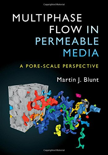 Multiphase Flow In Permeable Media  A Pore Scale Perspective