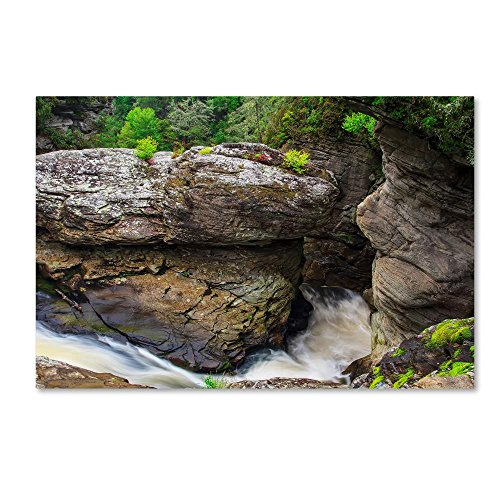 Linville River Gorge2 by Bob Rouse, 22x32-Inch Canvas Wall - Natural Linville