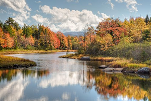 Maine River with Colorful Fall Foliage Photo Art Print Poster