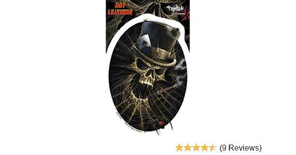 94e7d4aec3b4c Amazon.com: Hot Leathers - Smoking Spiderweb Skull - Sticker / Decal:  Automotive