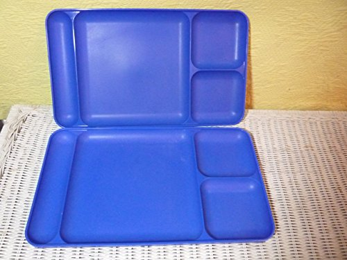 Tupperware Divided Dining TV Trays Picnic Kids Lunch Plates (Tupperware Kids Trays)
