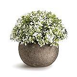 Vintage Bonsai Artificial Plant Ornaments Flower Grass Ball Pot Home Decoration Realistic Plastic Plants (D)