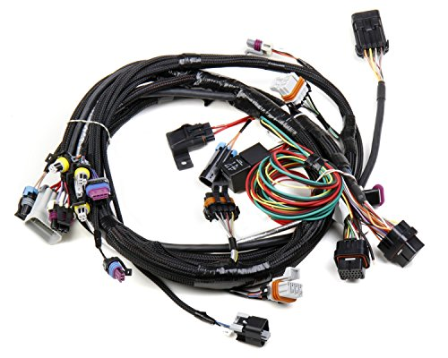 Holley 558-102 LS1 Main Harness by Holley