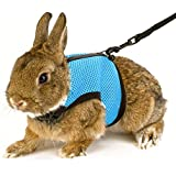 Calunce Soft Rabbits Harness with Leash (blue 1pcs)