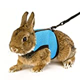 Calunce Soft Rabbits Harness with Elastic Leash