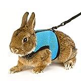 Calunce Soft Rabbits Harness with Elastic Leash
