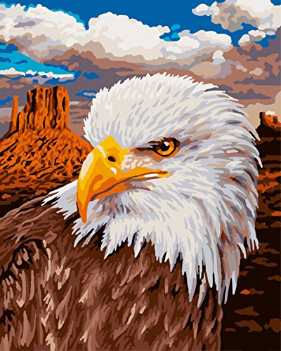 Framed Picture On Canvas Acrylic Paint By Numbers Diy Oil Painting By Numbers Christmas Gift Coloring By Numbers Eagle G391