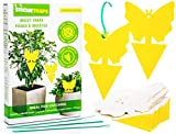 StickieTraps are ideal for trapping fungus gnats, fruit flies & other flying insects which are naturally attracted to its bright yellow colour. A non-toxic & poison-free solution, the glue-free pointed base can be conveniently stuck d...