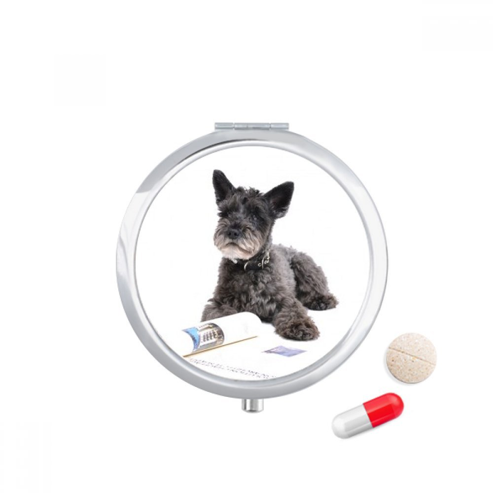 Dog Pet Animal Photography Pictures Travel Pocket Pill case Medicine Drug Storage Box Dispenser Mirror Gift