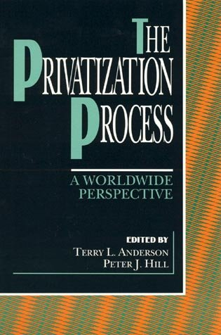 Book cover from The Privatization Processby Creswick  R.J.
