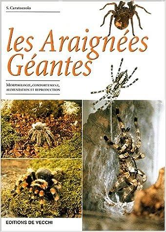 Lire un Les araignées géantes pdf