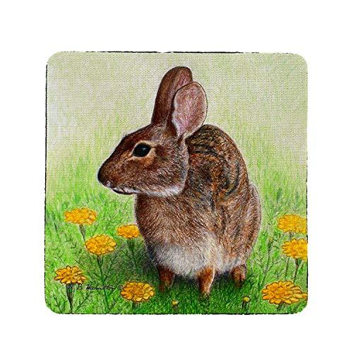 - Betsy Drake CT063 Rabbit Coaster, Set of 4