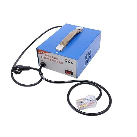 WSHZ Cargador de batería para Coche, 60 V/48 V, 10 A ...