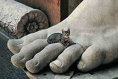Calendario de los gatos de Roma.: Amazon.es: Oficina y papelería