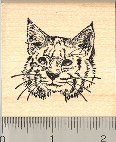 Bobcat Rubber Stamp, North American Lynx Cat
