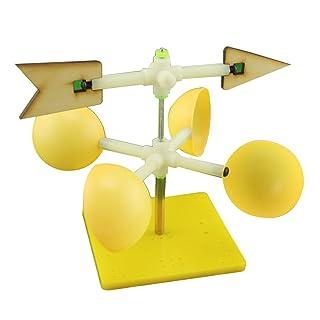 TOYMYTOY Segnavento per Esperimento Scientifico Giocattoli Educativi per Bambini