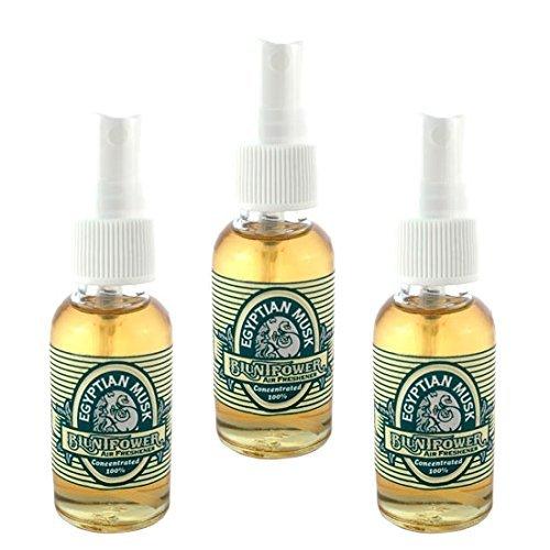 BluntPower 1 oz Glass Bottle Oil Based Concentrated Air Freshener & Oil Burner, Egyptian Musk (Pack of 3)