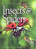 Insects and Spiders, , 1876778849