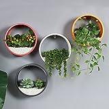 Wall decoration hanging pots pendant creative home shop window coffee-N