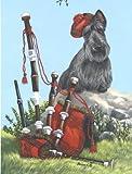 Scottish Terrier Piper%2DGF