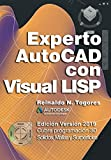 img - for Experto AutoCAD con Visual LISP: Edici n Versi n 2019 (Spanish Edition) book / textbook / text book
