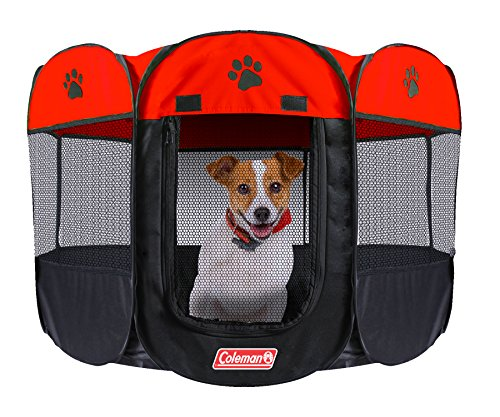 Indoor Dog Run: Amazon.com