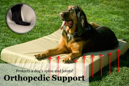 K9 Ballistics Tough Orthopedic Memory Foam Dog Bed