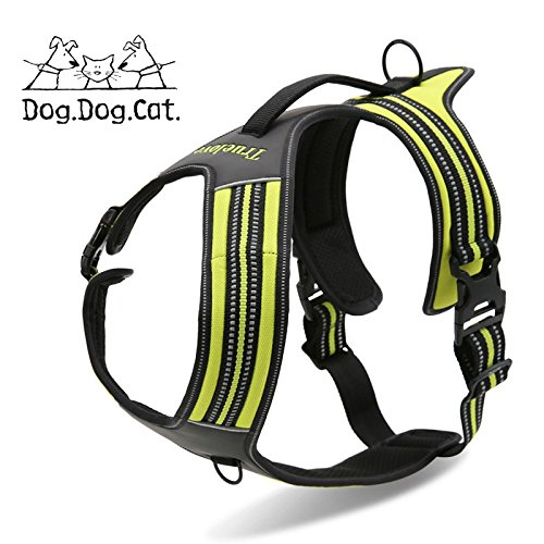 Lime XL Lime XL No Pull Active Dog Reflective Harness (XL = 35.5-49 , Lime)