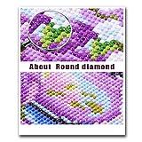 DPLEFO DIY 5D Diamond Painting Kit for Adults Full
