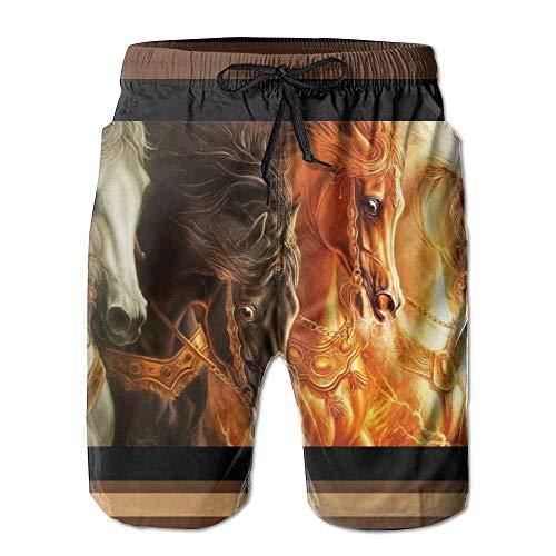 利用可能竜巻令状家屋 紳士のファッションと快適のビーチショーツ スイムショーツ メッシュインナー 通気 速乾 ビーチズボン 海水パンツ ショートパンツ