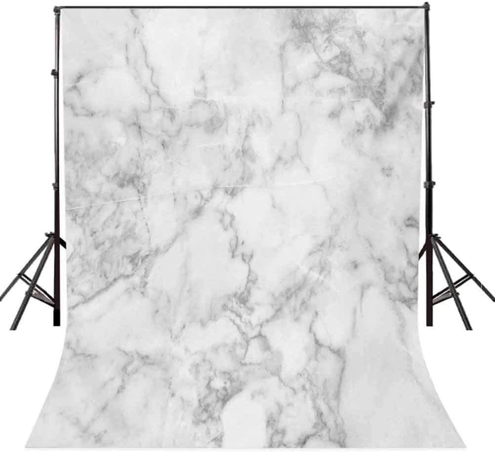 Marble 10x12 FT Backdrop Photographers,Nature Granite Pattern with Cloudy Spotted Trace Effects Marble Artistic Image Background for Party Home Decor Outdoorsy Theme Vinyl Shoot Props Pale Grey Dust