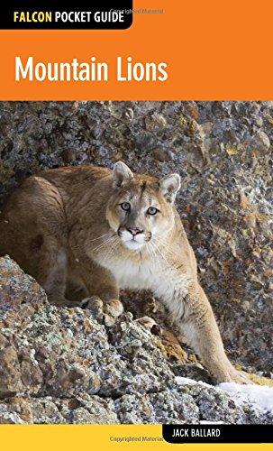 Mountain Lions (Falcon Pocket Guides)